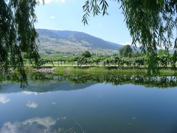 Silver Sage Winery 1