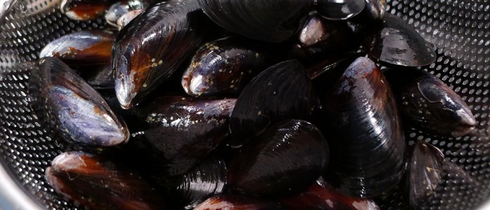 West Coast mussels