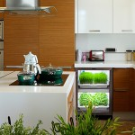 #IndoorGardenLunch with Chef Darren Brown and the Urban Cultivator at Adera's The Shore